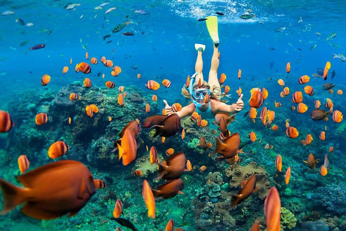 Maldivi ronjenje