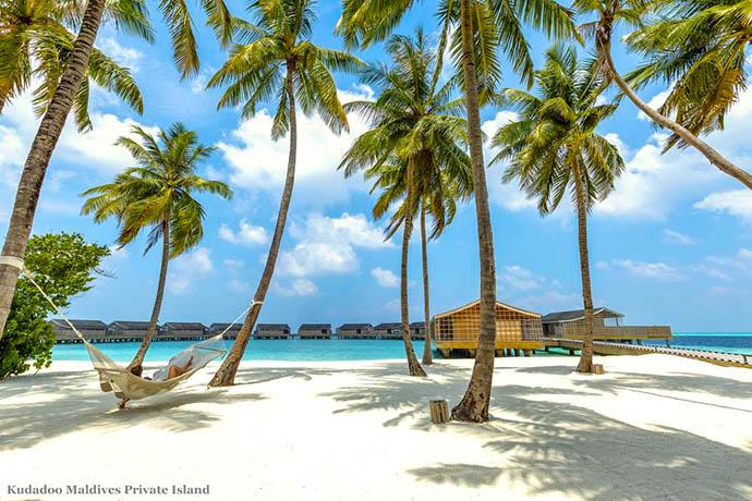 devojka leži na ležaljci ispod palmi